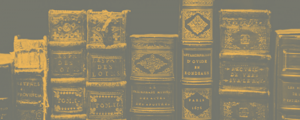 Spines of old leather books with raised bands and embossed lettering. Some of them are worn.